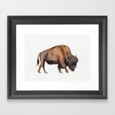 Little Watercolour Bison Drawing Framed Art Print