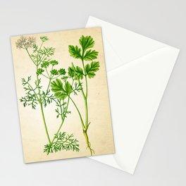 Cilantro Herb Art Print, Herbs Art Print, Cilantro Poster, Cooking Herb Print, Cilantro Art Print, Cilantro Kitchen Art Print, Kitchen Decor Stationery Cards