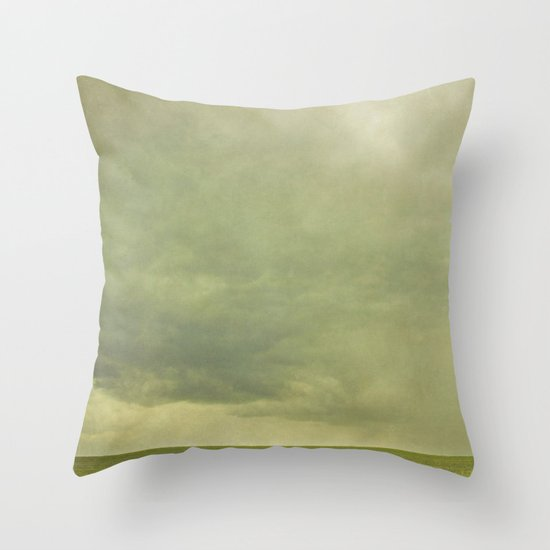stormfront  Throw Pillow