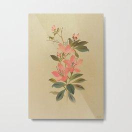 Peruvian Lily and Grasshopper Metal Print
