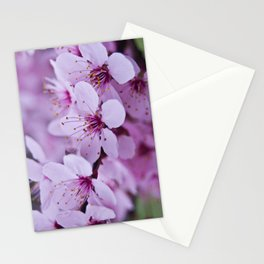 Backyard Blossoms 2 Stationery Cards