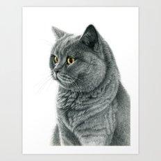 The Chartreux portrait G112 Art Print