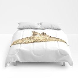 Angel shark Comforters