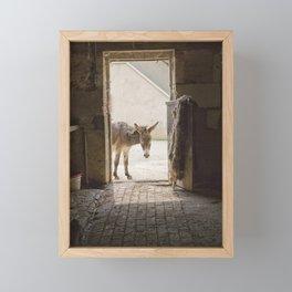 Cute Burro Looking Inside a Doorway Framed Mini Art Print