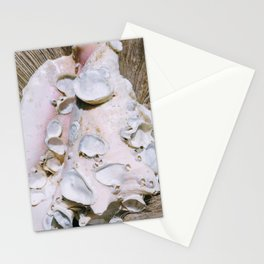 Ancienne conque Stationery Cards