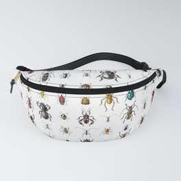 Beetlemania / Get your entomology on! Fanny Pack