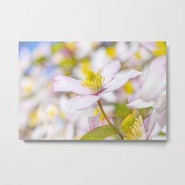 Spring Flora Metal Print