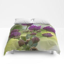 Purple Bougainvillea Comforters