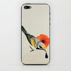 a to z iPhone & iPod Skin