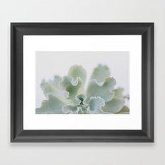 succulent 05 Framed Art Print