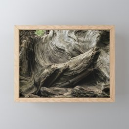 Etched by Nature Scarred by Man Framed Mini Art Print