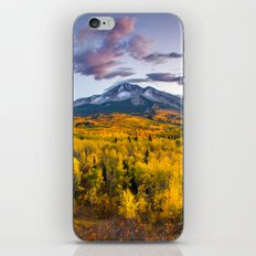 Chasing The Gold iPhone & iPod Skin