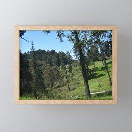 Redwood Meadow (Redwood Regional) Framed Mini Art Print
