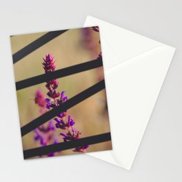 deliberate Stationery Cards