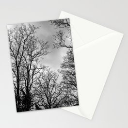 Black and white haunting trees Stationery Cards