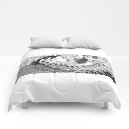 asc 794 - Les brûlants (Burning in devotion) Comforters