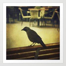 Watch the birdie Art Print