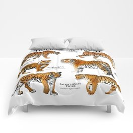 Tigers of the World Comforters