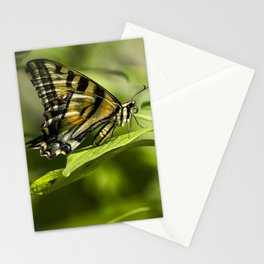 Butterfly Resting Stationery Cards