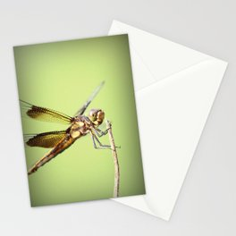Hey guys! Stationery Cards