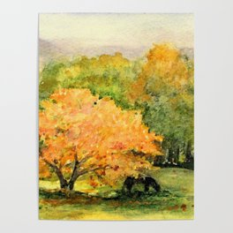 Autumn Landscape Horses Under Maples Poster