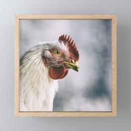 The white rooster Framed Mini Art Print