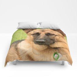 Max Comforters