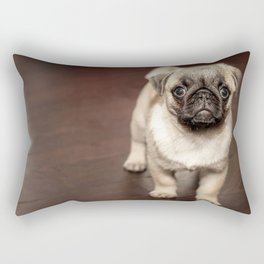 Baby Frank Rectangular Pillow