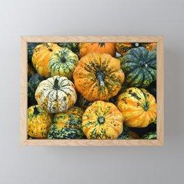 Decorative Pumpkins Framed Mini Art Print