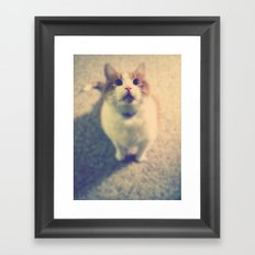 Pink Nose Framed Art Print