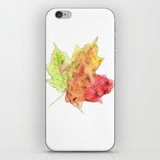 Fall Leaf #2 iPhone & iPod Skin