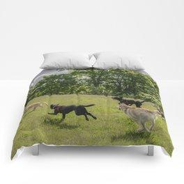 dog fun Comforters