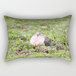Mourning Dove Stare Rectangular Pillow