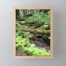 Creek and trunk crossing Framed Mini Art Print