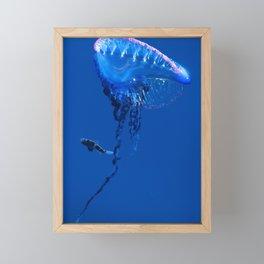 Fish and friend jellyfish Man O´War Framed Mini Art Print