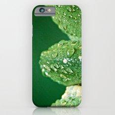 San Diego, California iPhone 6s Slim Case