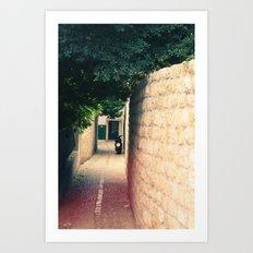 Croatian Alley Art Print
