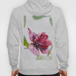 Old red rose Hoody