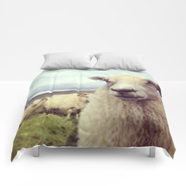 What's up? Comforters