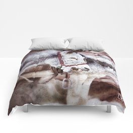 The Laughing A$$ Comforters