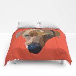 Cody Comforters