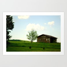 The front-yard house  Art Print
