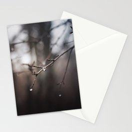 The Rain Leaves Behind Jewels Stationery Cards
