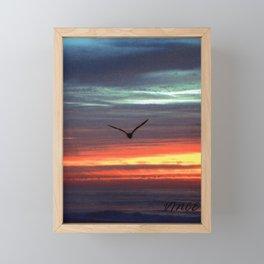 Black Gull by nite Framed Mini Art Print