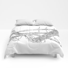 tangled cedars Comforters