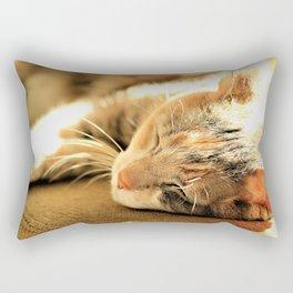 Sleepy Kitty Pretty Kitty by Reay of Light Rectangular Pillow