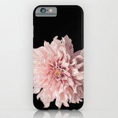 Pink Daliah iPhone 6s Slim Case