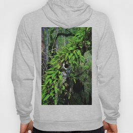 In High Regard- vertical Hoody