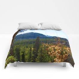 Mt Fall Intense Comforters
