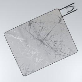 Silver Splatter 089 Picnic Blanket